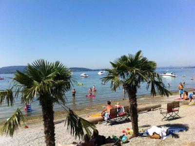 Palmen am Strand mit Badegästen